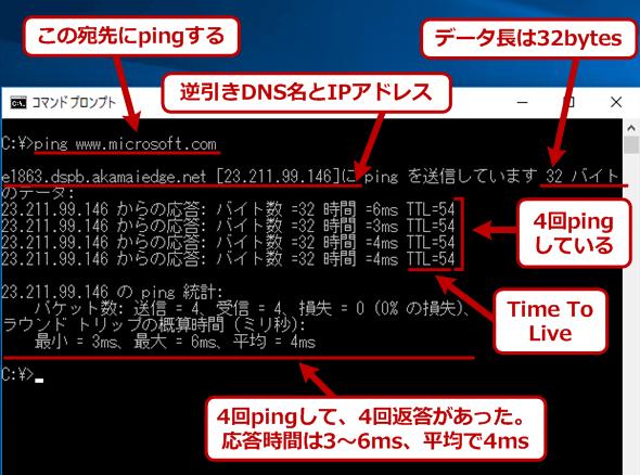 pingコマンドの実行例