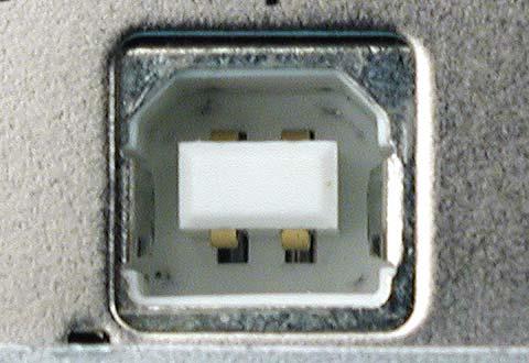機器に搭載されているUSB Standard-B(スタンダードB)のコネクター(レセプタクル)の写真