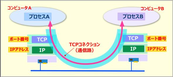TCPの通信モデル