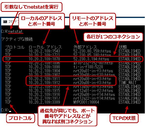引数なしでnetstatコマンドを実行する