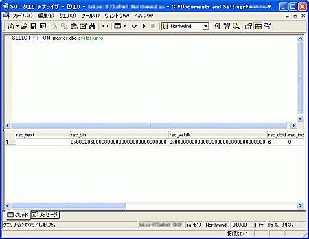 画面4 syslockinfoの内容(画面をクリックすると拡大表示します)