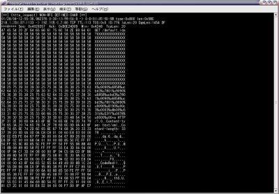 前回作成した「/var/log/snort」ディレクトリに出力される内容