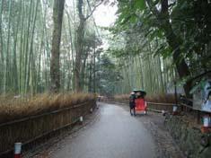 竹林など見どころが