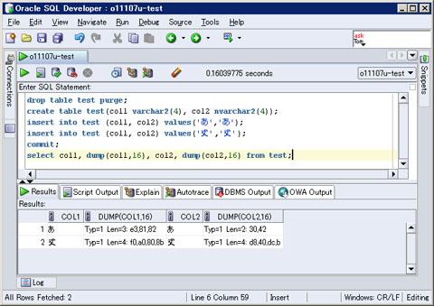 図8 SQL Developerでの実行例