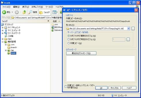 図17-2 登録する種別(tag、branch)とバージョンを入力する