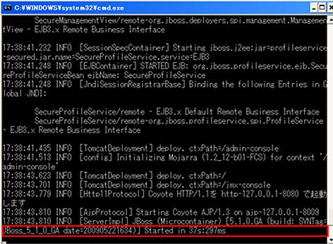 図6 JBoss Application Serverの起動時のコンソール