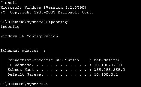 画面4 ipconfigの結果から、パスワードの使い回しが判明したホスト上でコマンドが実行されていることが分かる