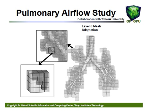 Pulmonary Airflow Study1