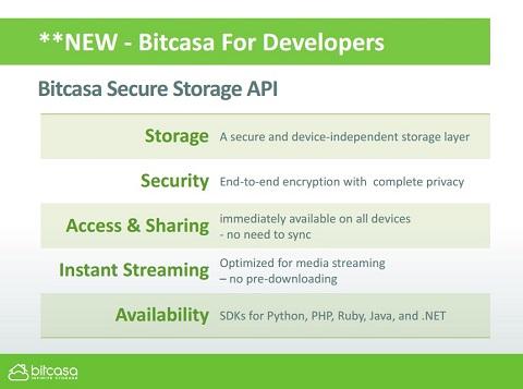 Bitcasa APIの特長