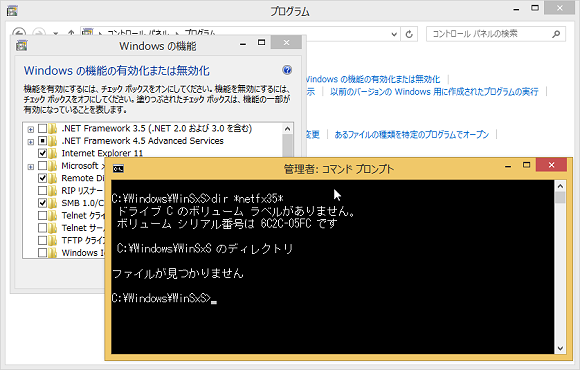 winsxs ファイル