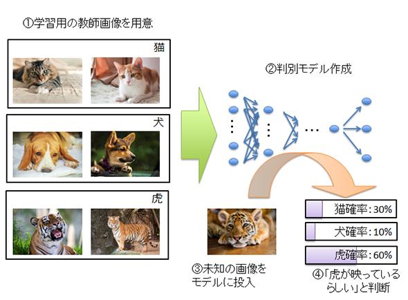caffeDL2_1.jpg