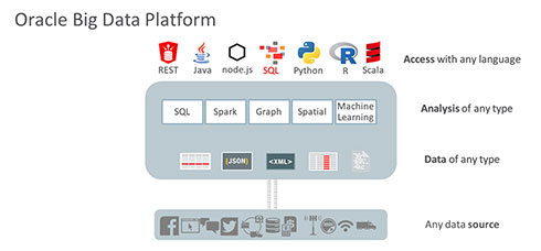 「Oracle Big Data Platform」の適用範囲