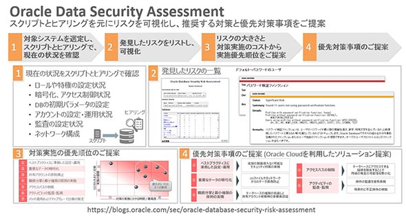 Oracle Data Security Assessment