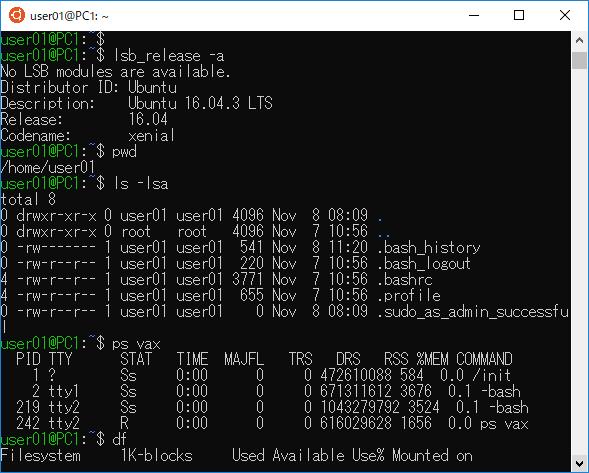 Ubuntuの使用例