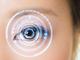「虹彩」を用いた生体認証技術、スワローインキュベートがSDKを提供