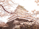"""福島編:冬はスノボ、夏はジェットスキー!—ー多拠点プロジェクトで働く""""会津っぽ""""の幸せなエンジニアライフ"""