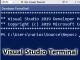 「Visual Studio Terminal」、Microsoftが最初のプレビュー版を提供開始