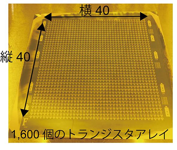 印刷技術で制作した1600個の有機トランジスタアレイ
