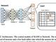 ライス大学研究チーム、GPUを使わずにディープラーニングを高速化するアルゴリズムを開発