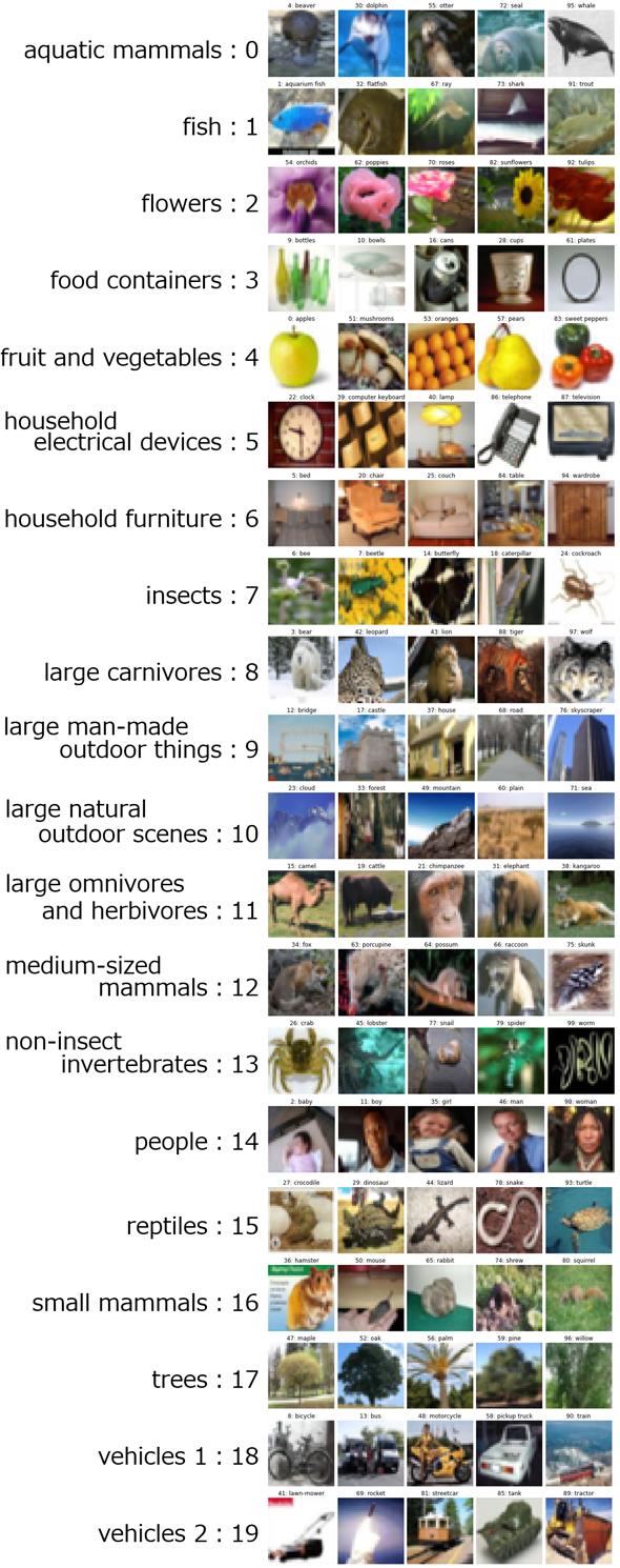 図1 CIFAR-100に含まれる「動植物や機器、乗り物など100種類の画像」の例