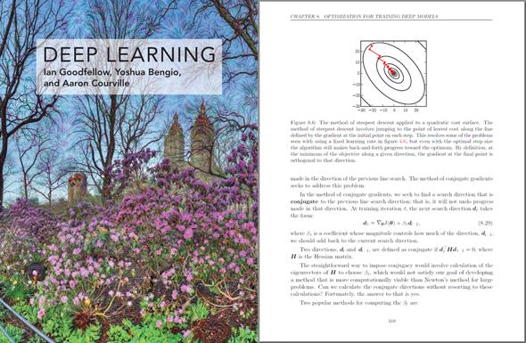 図2 『Deep Learning』の表紙と、中身の1ページの引用
