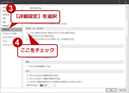 [貼り付けオプション]ボタンの表示を有効にする(2)