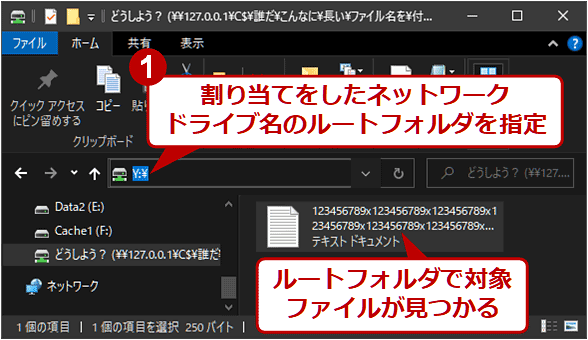 ネットワークドライブとして接続された、対象ファイルのあるフォルダ