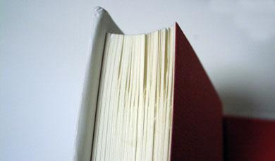 ks_book2.jpg