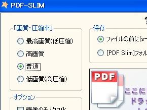 st_pdf21.jpg