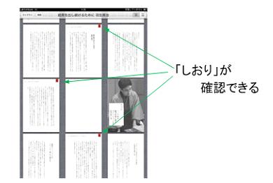 st_kai03.jpg