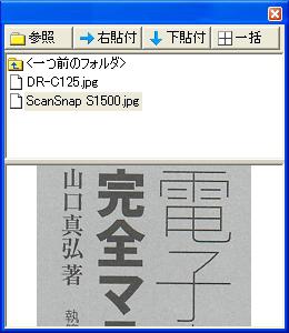 sk_elh02.jpg