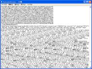 shk_en313.jpg