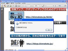 st_pdf03.jpg