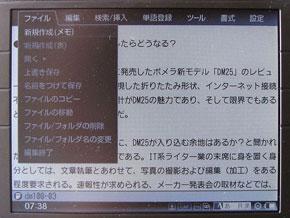 sa_dm03.jpg