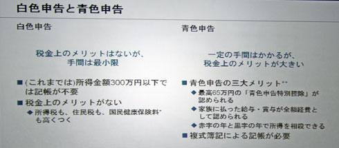 shk_yayoi02.jpg