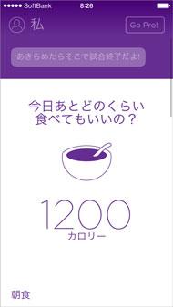 shk_app01a.jpg