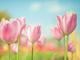 総務の仕事——春(4〜6月)