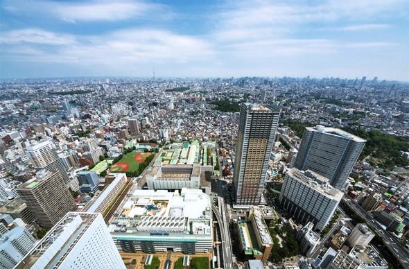 yd_fujiwara1.jpg