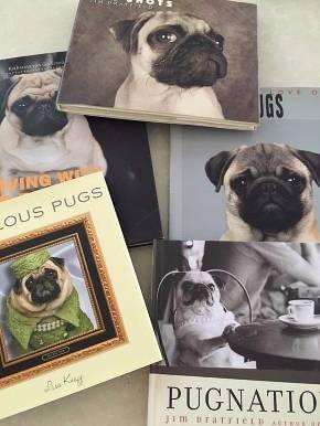 愛すべきパグの写真集コレクション