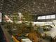 JALの航空整備士、アプリで作業効率化