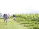 星野リゾート「リゾナーレ八ヶ岳」の成長が止まらない理由