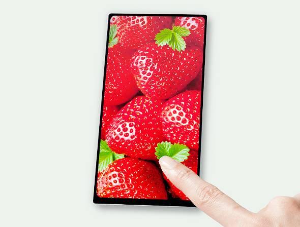 JDIが17年6月から量産開始したスマートフォン向け4辺フリーFULL ACTIVE