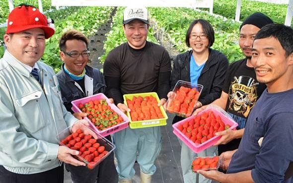「イチゴの里」を宣言し、宜野座村産のイチゴをアピールする當眞淳村長(左端)とイチゴ農家=1月15日、宜野座村