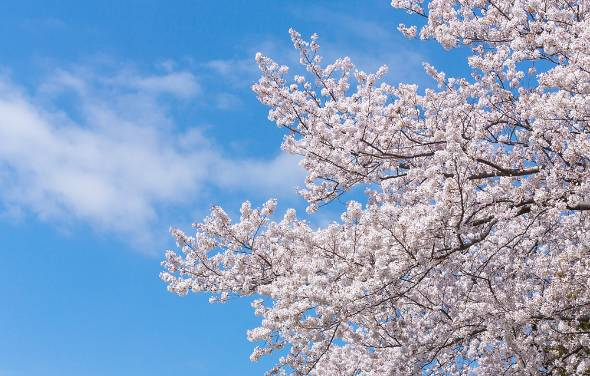 まもなく4月、新年度がスタートする。ビジネスマンはイメチェンのチャンスだ!