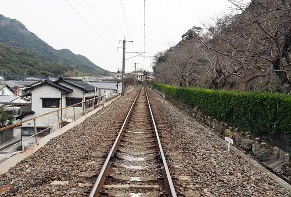東京で働く長男が地元に戻ってくることを諦めた親が大多数を占めた(写真はイメージです)