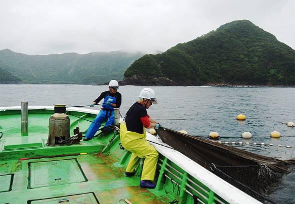 都内で居酒屋を運営するゲイトが三重県尾鷲市で定置網漁を始めた