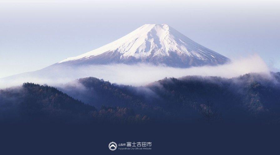 吉田 市 コロナ 富士