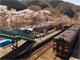 春のわたらせ渓谷鐵道 その1——家族旅行とテツを両立させるには