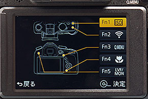 DMC-FZ1000
