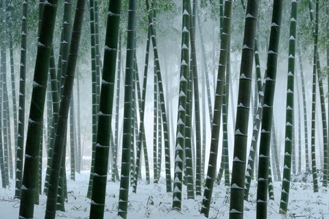 hs_Takashi_Sato.jpg